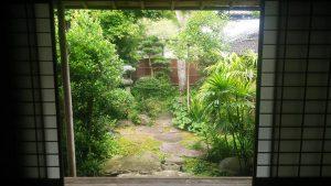 竹川家のお庭